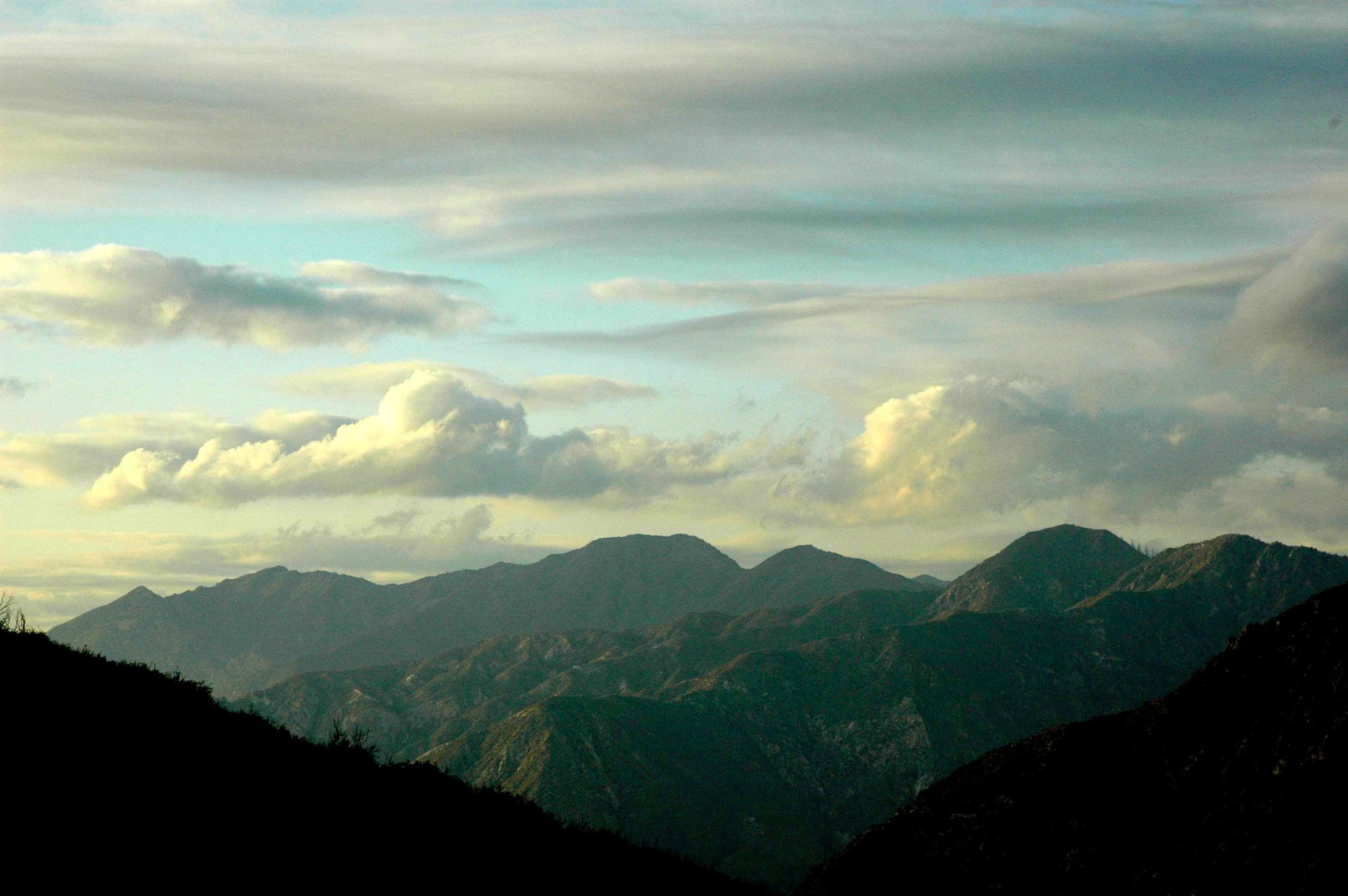Angeles National Forest (photo by Yvonne Condes)