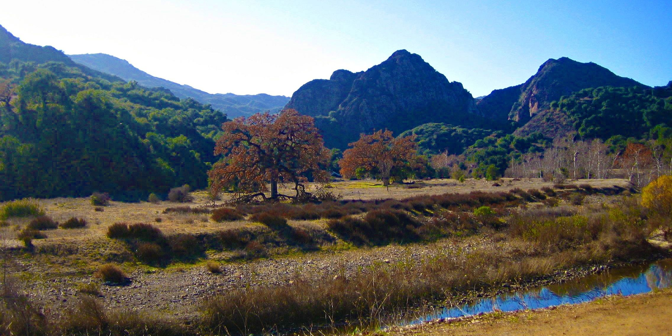 Malibu Creek State Park (photo by Yvonne Condes)