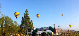 Temecula Wine Country and Rock and Roll Half Marathon