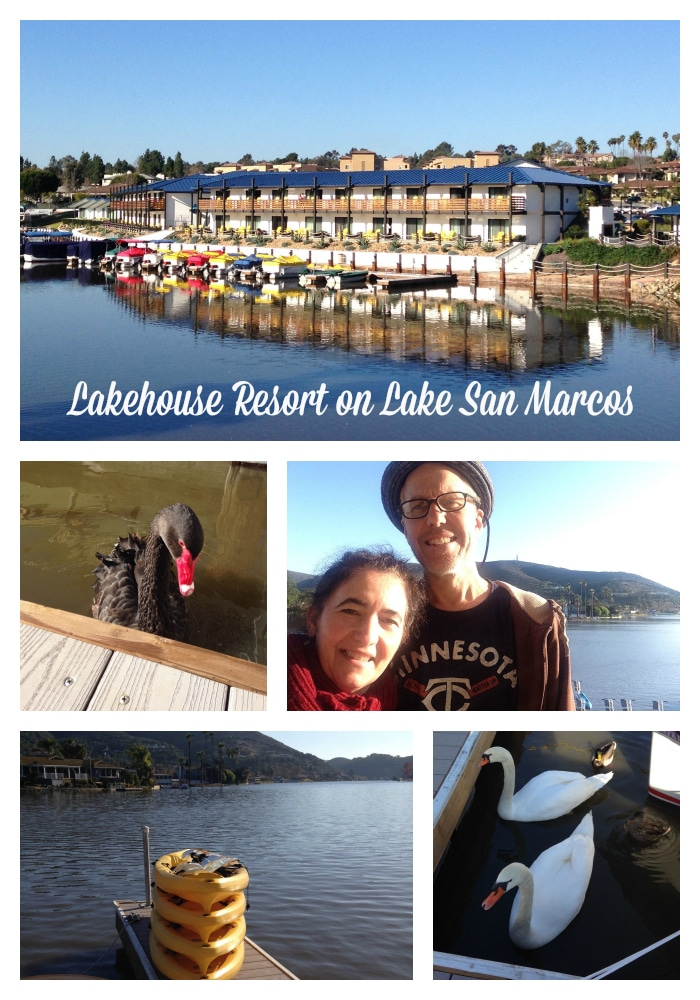 Lakehouse and lake activities