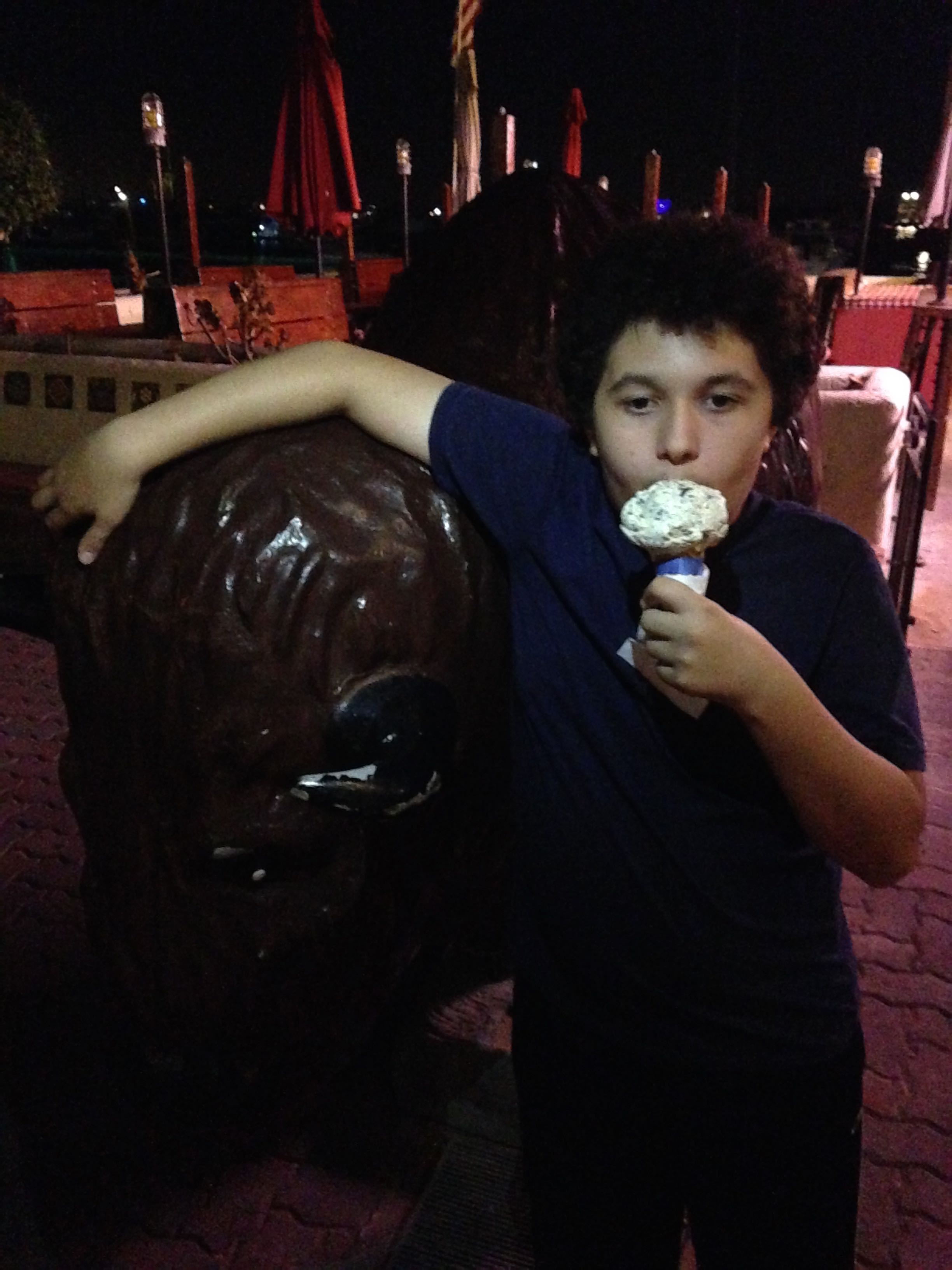 eating ice cream from Big Olaf's next to a buffalo