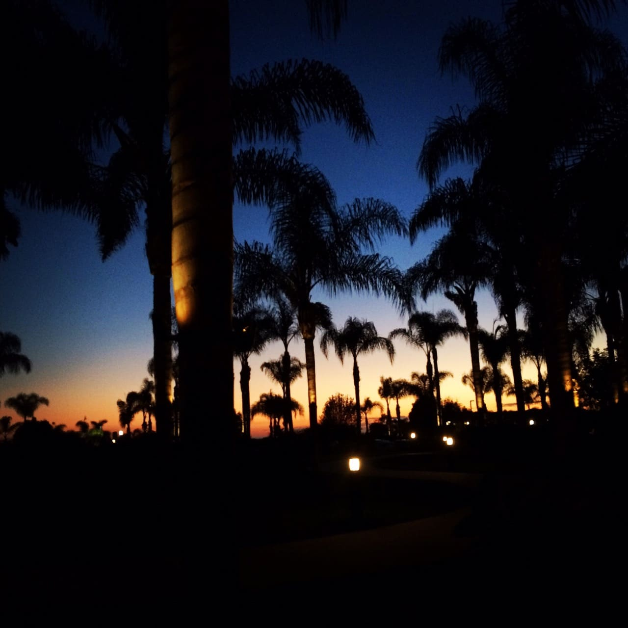 Sunset-carlsbad-sheraton