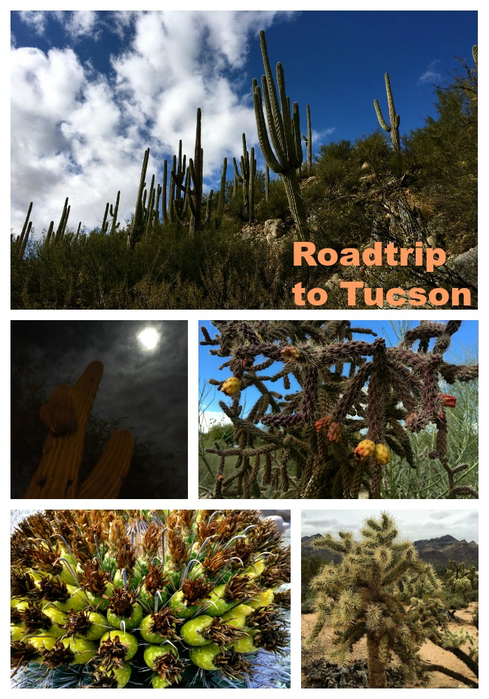 Roadtrip to Tucson