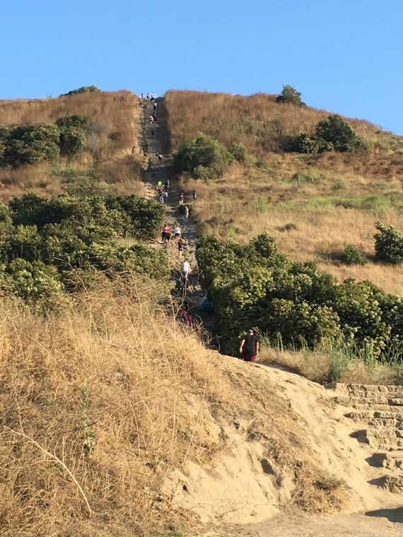 Climbing to the top of the Baldwin Hills Scenic Overlook (by stairs or on a walk around the hill) is one of the fun things to do with kids in Culver City. #culvercity #losangeles