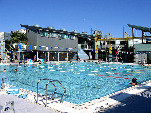 12 Best Public Pools In And Around Los Angeles Momsla