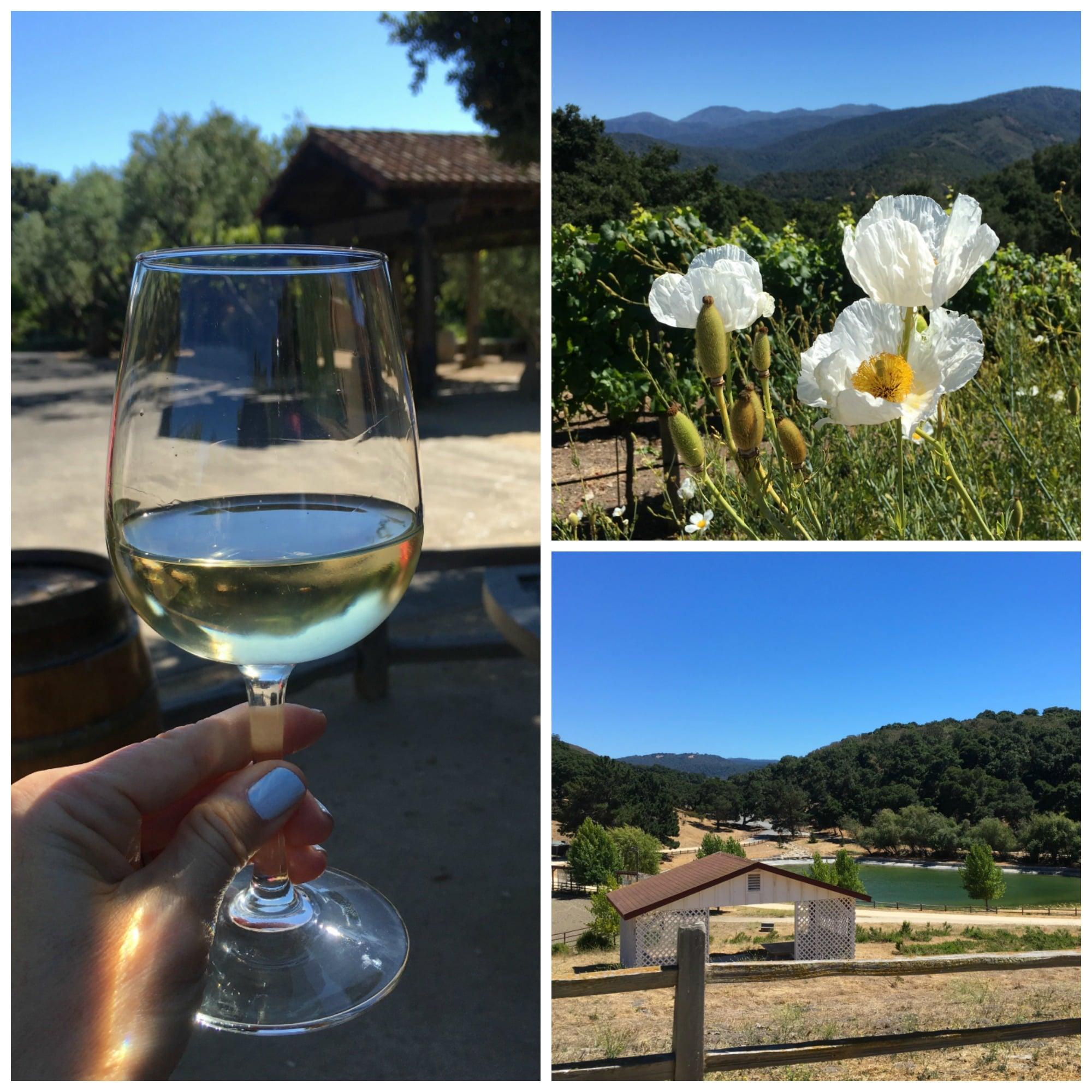 Holman Ranch in Carmel Valley