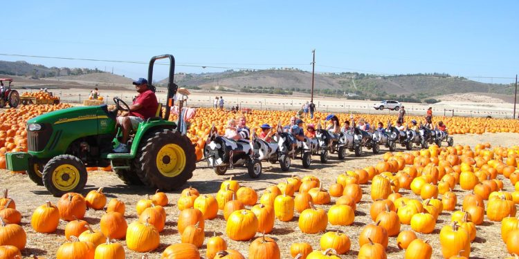 Underwood Family Farms Harvest Festival is one of the many fun things to do this weekend in Los Angeles with kids.
