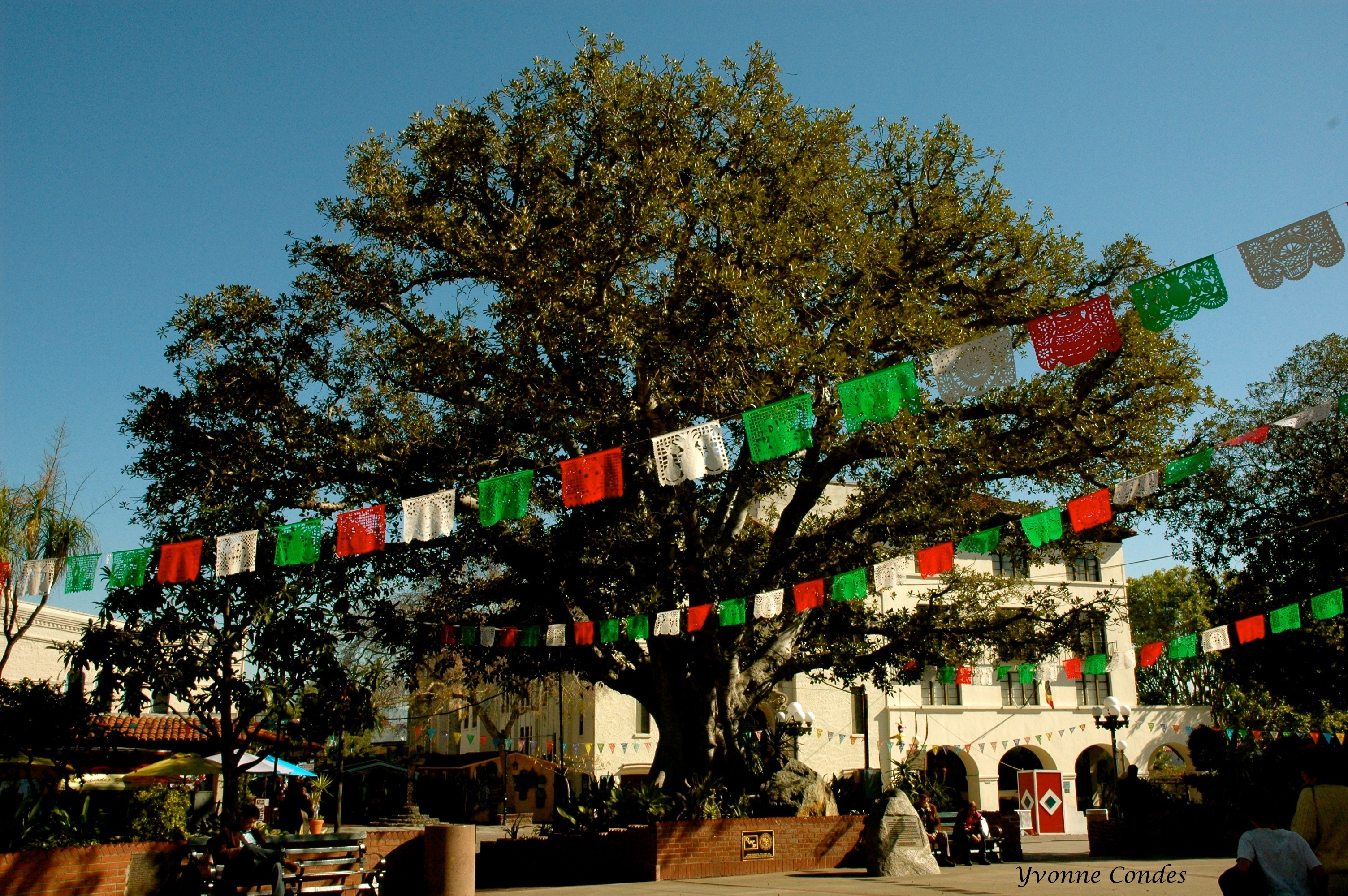 Olvera Street has many fun things for families to do - restaurants, shopping, outdoor space