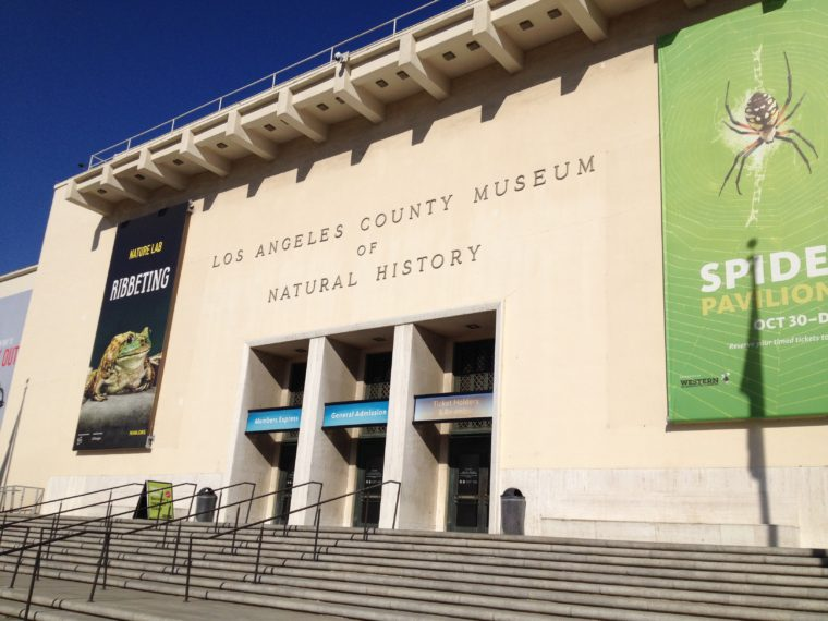 Fun Things To Do In Los Angeles With Kids This Weekend