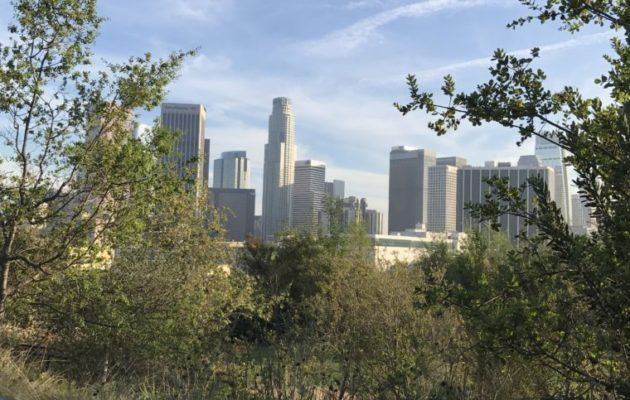 The Best Parks on Los Angeles' Eastside