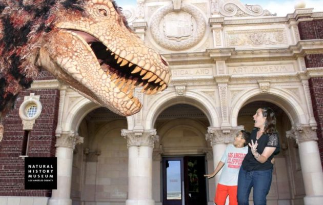 Guide to the Natural History Museum. #losangeles #dinosaurs #losangelesmuseums #museums #familytravel
