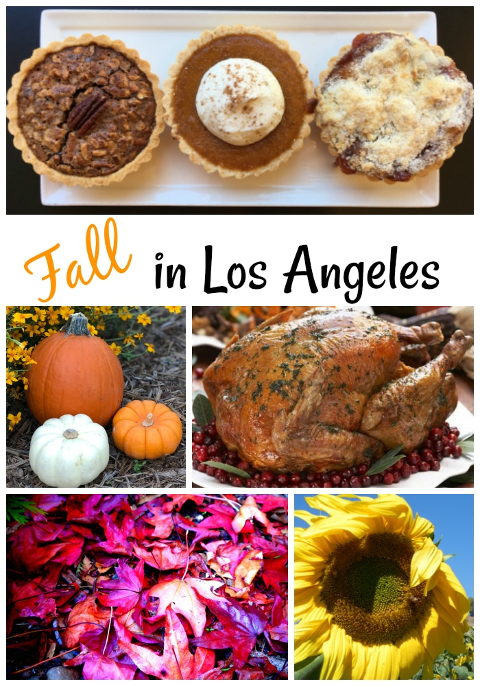 Fall is a great time to be in Los Angeles. Check out our guide for things to do for Thanksgiving and beyond. (photos by Yvonne Condes except for the turkey, which is courtesy of Descanso Gardens)