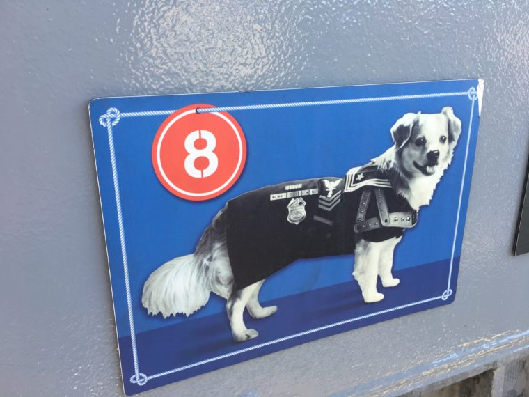 Victory the Dog scavenger hunt USS Battleship Iowa Museum in San Pedro