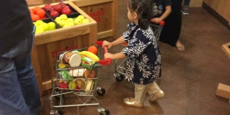pretend city grocery store