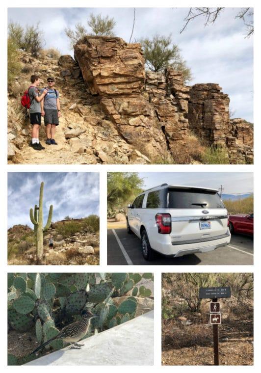 Sabino Canyon in Tucson Arizona