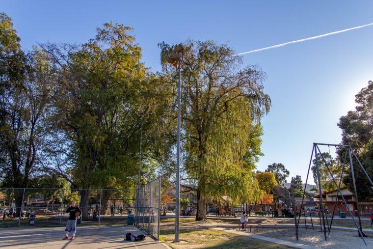 Neighborhoods.com shares the best walkable neighborhoods in Los Angeles on MomsLA. #losangeles #losangelesneighborhoods #studiocity