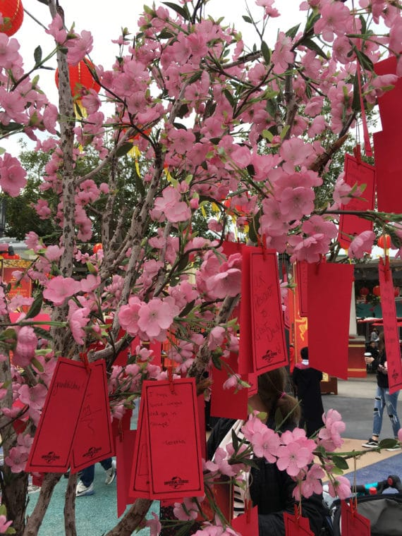 Wishing tree for Lunar New Year at Universal Studios Hollywood