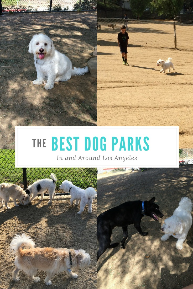 The best dog parks in the Los Angeles area. #losangeles #dogs #losangelesdogs