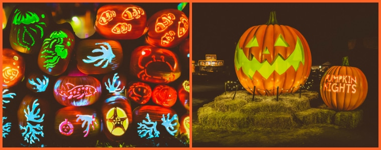 Pumpkin night is one of the fun things to do with kids in Los Angeles for Halloween.