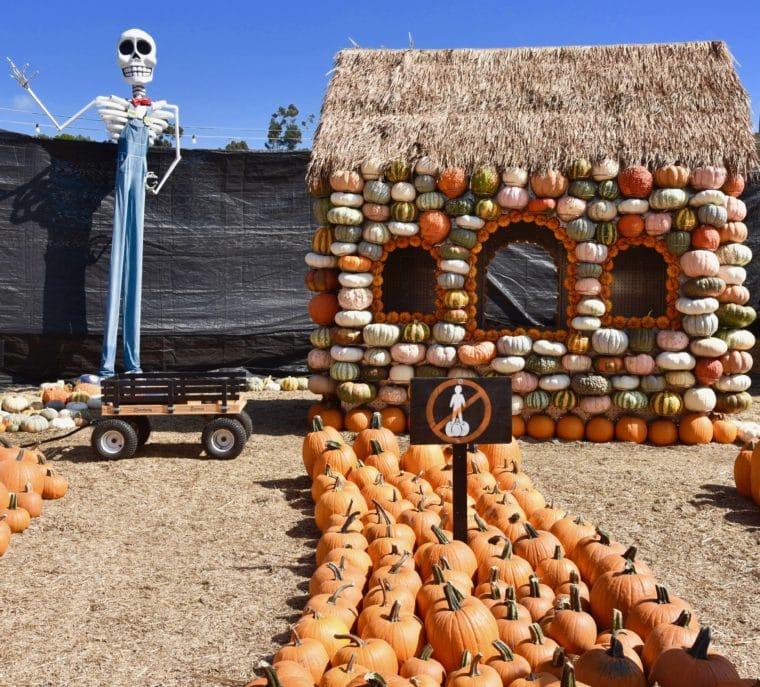 Kids can walk through Mr. Bones Neighborhood. #pumpkinpatch #pumpkins #mrbones #pumpkinhouse