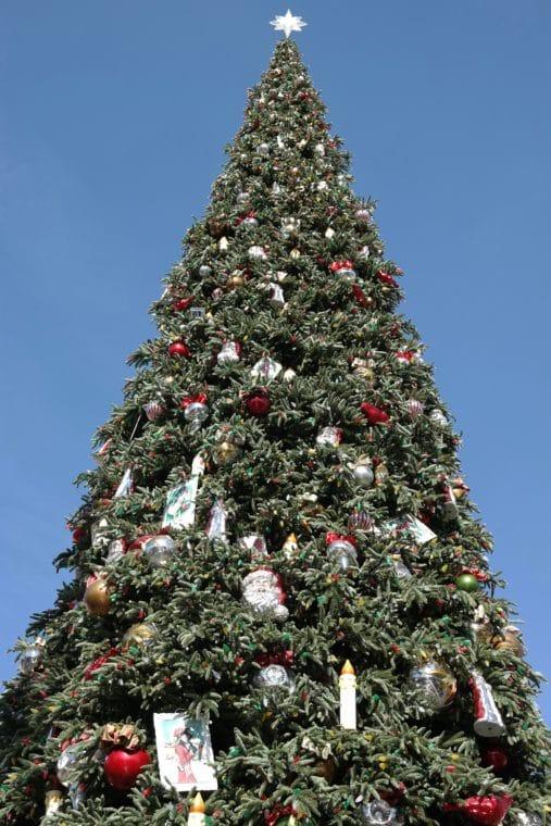 60-foot Christmas tree on Main Street in Disneyland