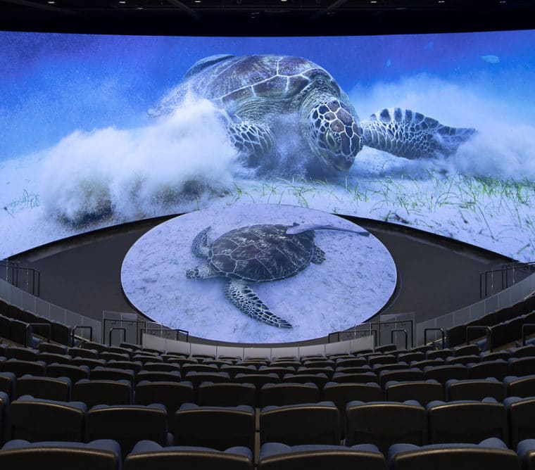 New Theater inside the new Pacific Visions Wing at Aquarium of the Pacific