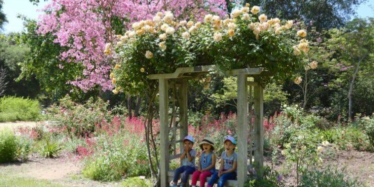 Botanical gardens kids sitting on bench