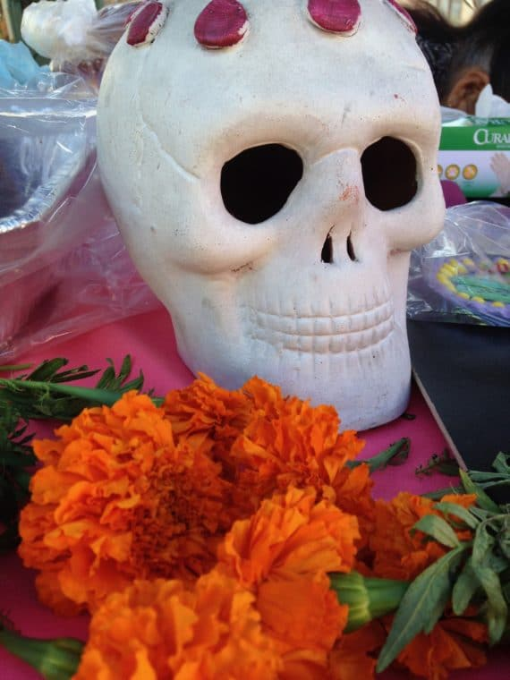 decorations for Day of the Dead a skull and marigolds