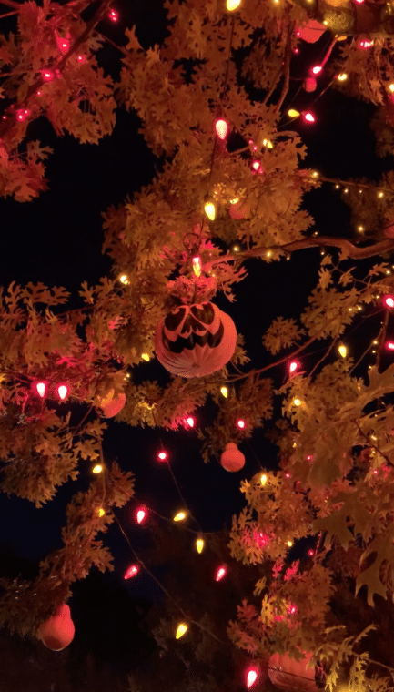 The official Halloween tree at Disneyland