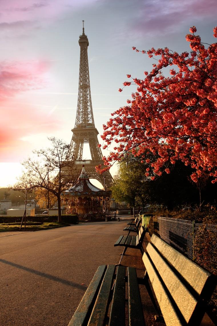 Eiffel Tower in Paris during Springtime