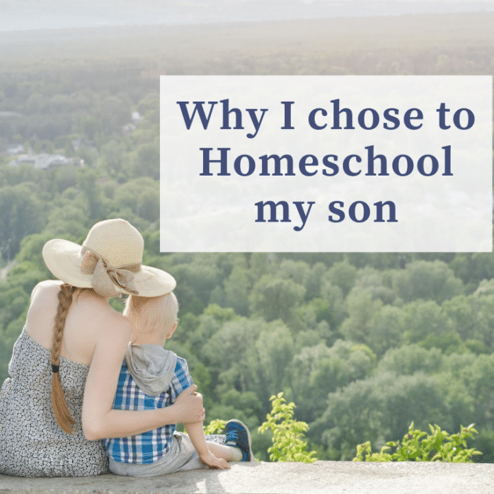why i chose to homeschool my son guest post