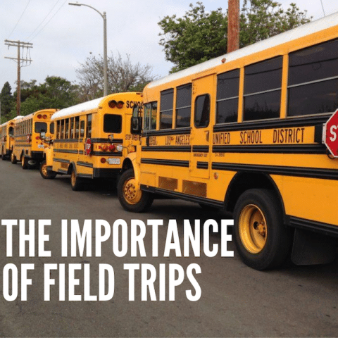 The-Importance-of-Field-trips
