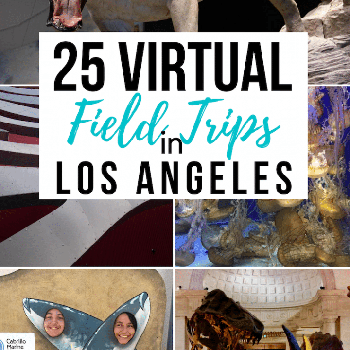 Virtual-Field-trips-los-angeles