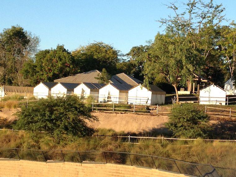 glamping tents at roar and snore safari park