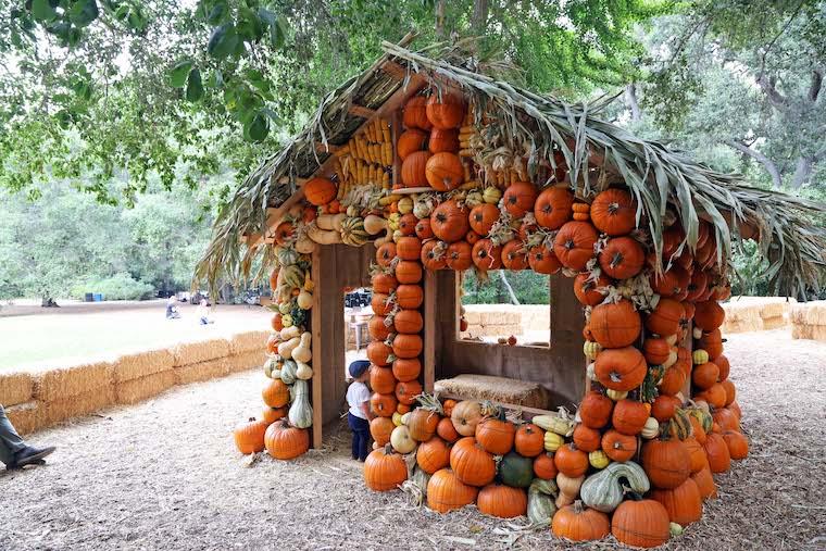 Halloween pumpkin house at Descanso Gardens