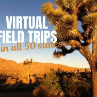 virtual-field-trips-in-50-states-joshua-tree