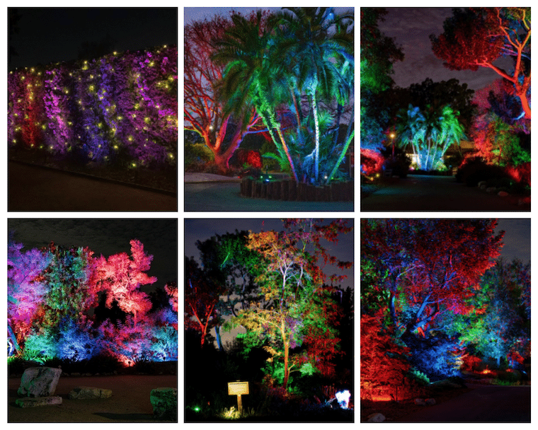 GLOW-at-South-Coast-Botanic-Garden