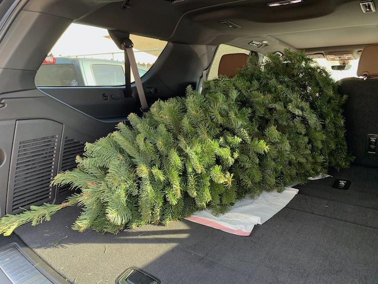 My 7-foot Christmas tree inside the Suburban