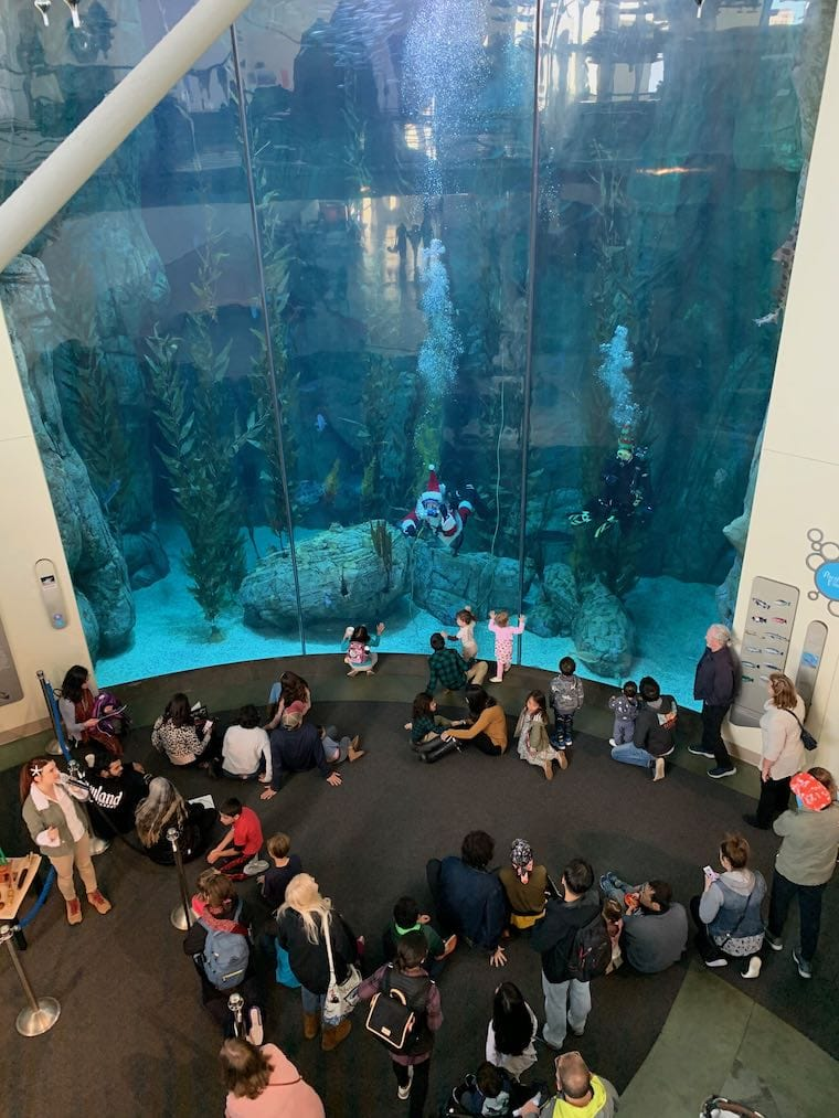 """Giant tank exhibit at the Aquarium of the Pacific, showing """"Santa Diver"""" and onlookers"""