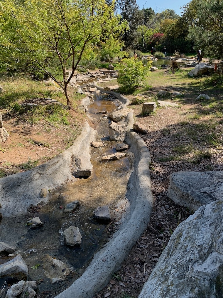 view of the tiny stream and pond at Hopkins Wilderness Park in Redondo Beach