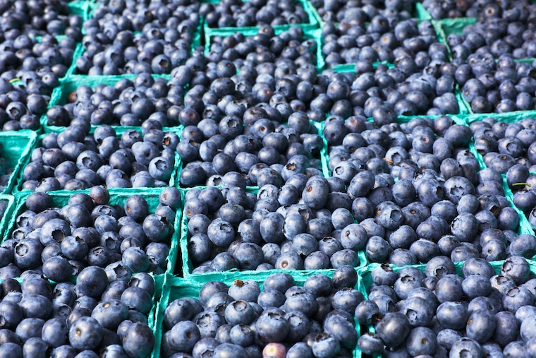 many cartons of blueberries at a farmers market