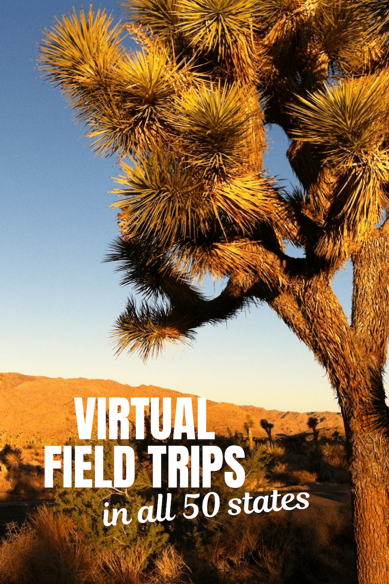 Joshua Tree National Park text virtual field trips in all 50 states