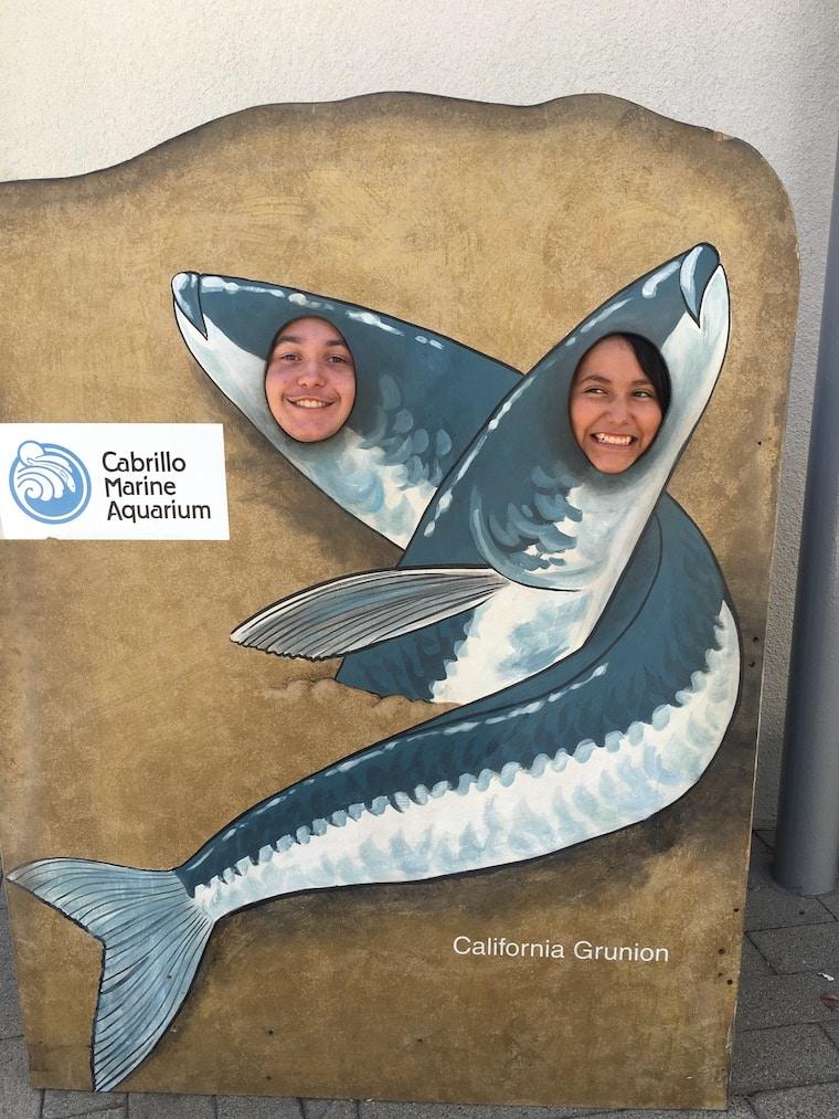 Cabrillo Aquarium grunion photo opp